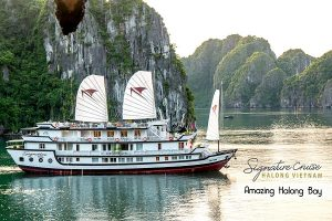 Signature Cruise - Five star cruise in Halong Bay